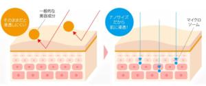 エルシーノの独自技術-マイクロソームの効果-イメージ